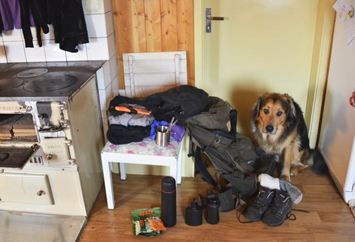 Nu får jag äntligen använda sakerna jag fick från Fjällräven Polar resan :) Man kan väl inte säga att Nanook ser jätteglad ut. Han gillar inte när jag packar, för då vet han att jag ska bort. Han får stanna hos mamma i helgen :)
