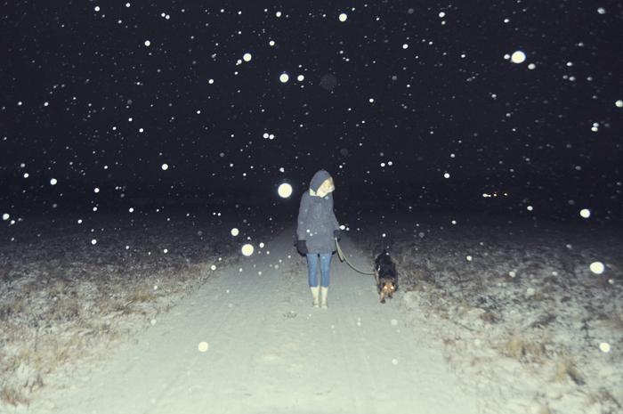 Men inte förrän den 28 november förra året kom snön för att stanna på riktigt.