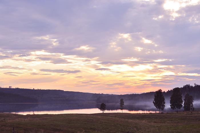 Wiesen im Morgentau by Jonna Jinton