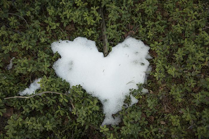 Awww, ett litet snöhjärta <3