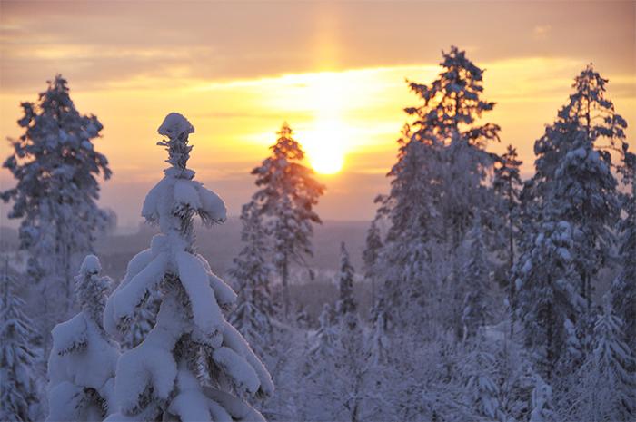 Vintern, snälla kom nu!