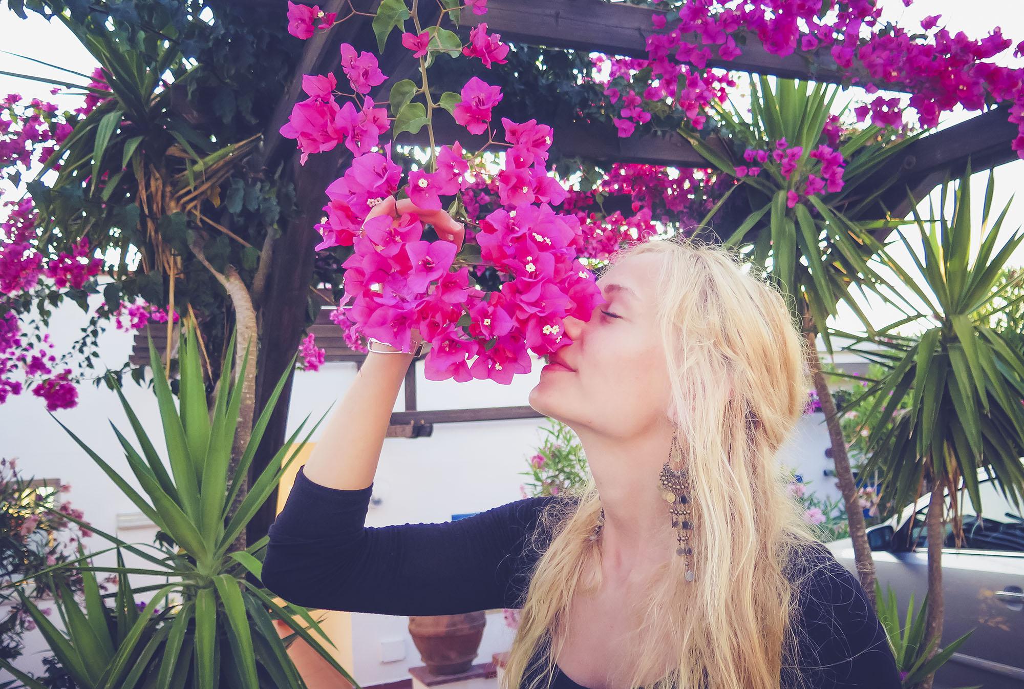 Överallt finns det vackra blommor och jag önskar så att alla de här stora, vackra buskarna med blommor i olika färger gick att ha i Grundtjärn. Men jag gissar på att de inte trivs i det klimatet. Annars skulle jag sätta igång att plantera på en gång.