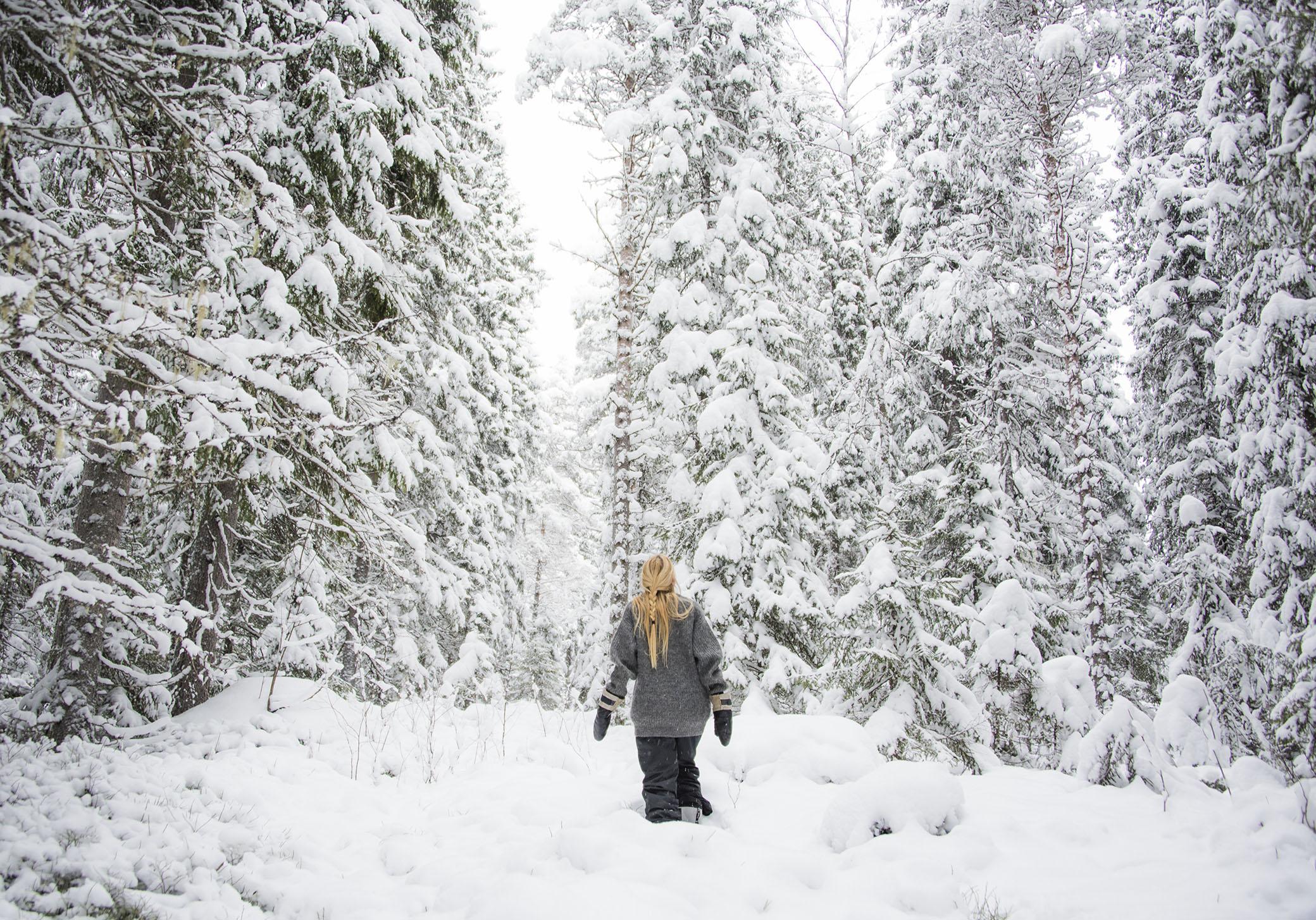 Skogen skänker ett lugn som inte går att finna någon annanstans.