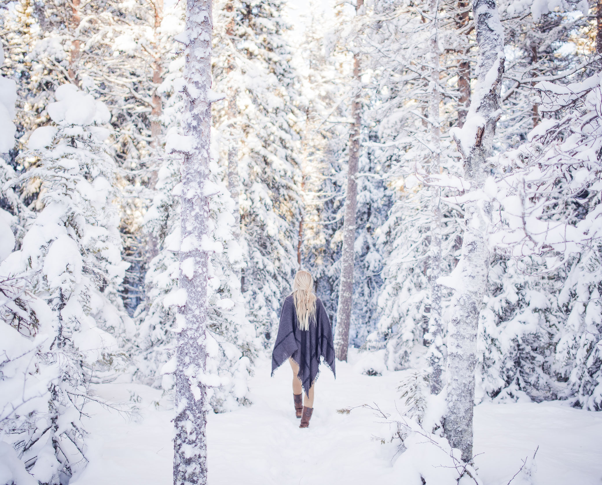 jonna jinton - vinterskog