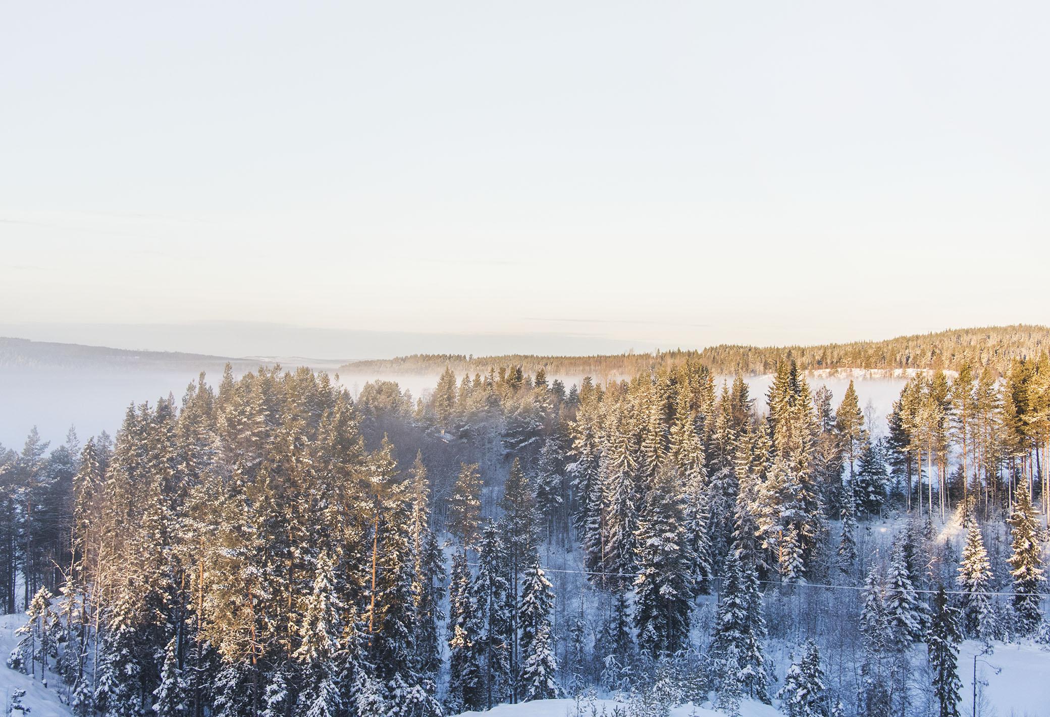 I morse gick jag upp på höjden ovanför byn för att möta solens första strålar och titta på morgondimman som låg tät över sjön.
