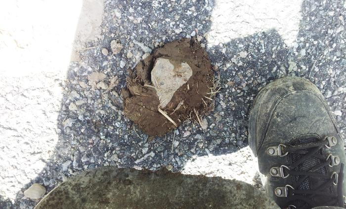 Hittade det här hjärtat i en dynghög på vägen. Så himla fint! eller hur? :D