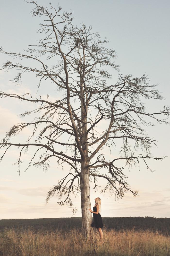 Ibland liknar jag livet med ett träd. Man börjar med en stam och genom det val och händelser som sker i ens liv skapas det nya kvistar som grenar ut sig på det mest otänkbara vis. Alla helt unika.