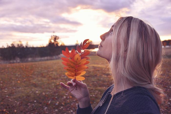 Blev inget fotande idag så här kommer en bild från vackra september istället! :)