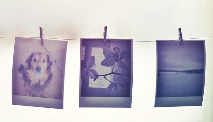Varför tycker jag det ser så vackert ut med polaroidkort? Jag blir lite nostalgisk. Känns som taget ur en gammal kärleksfilm.