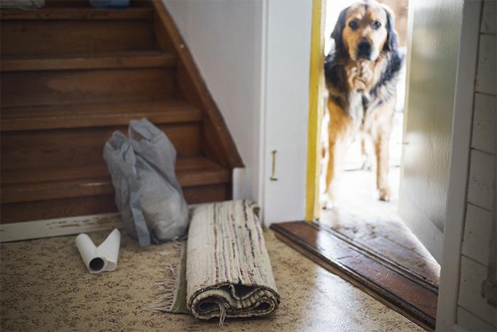 Dags att tvätta mattan för tredje gången. Eller så kanske jag inte ska ha någon hallmatta? ;)