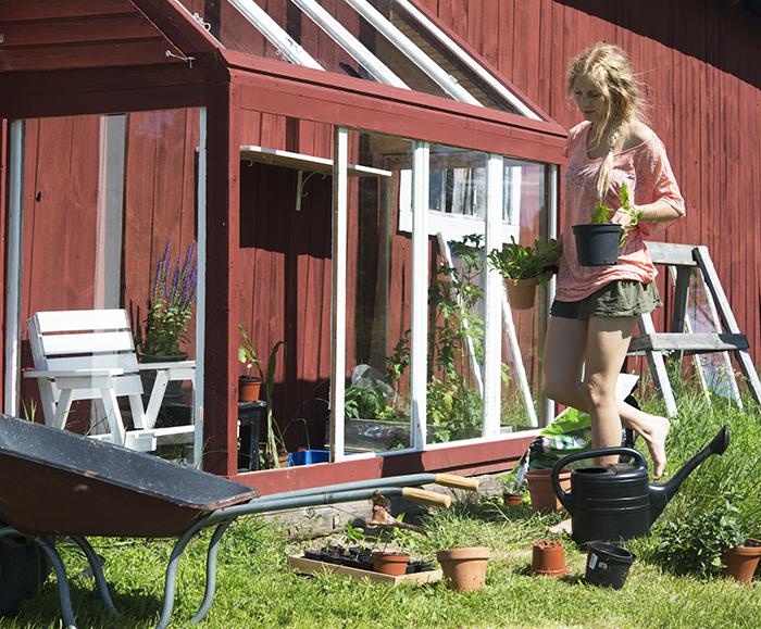 Planterar om växter som växt ur sina små krukor :)