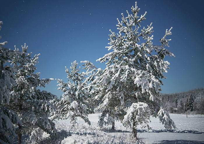Jag ser fram emot vintern <3