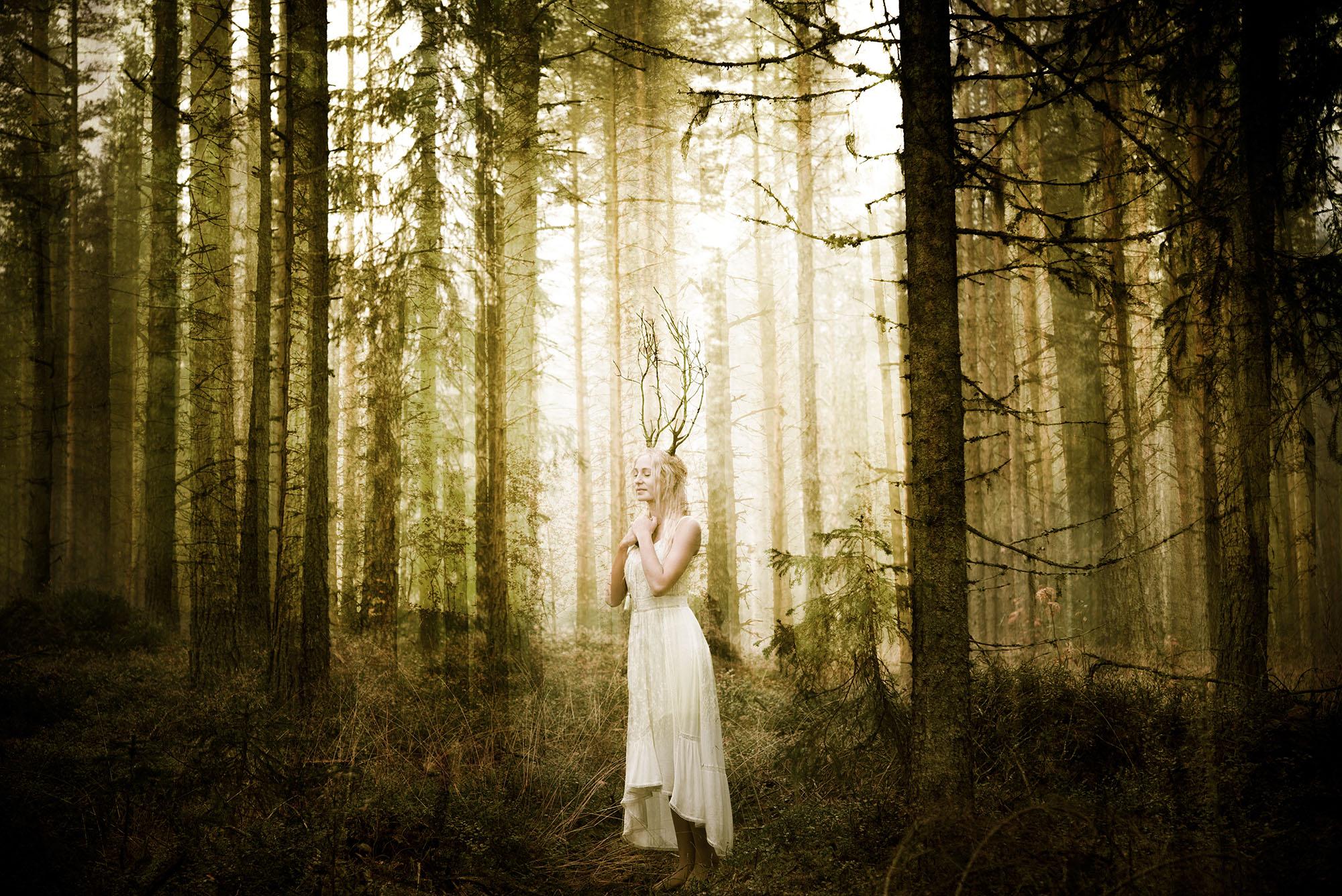 Andas med skogen - Jonna Jinton