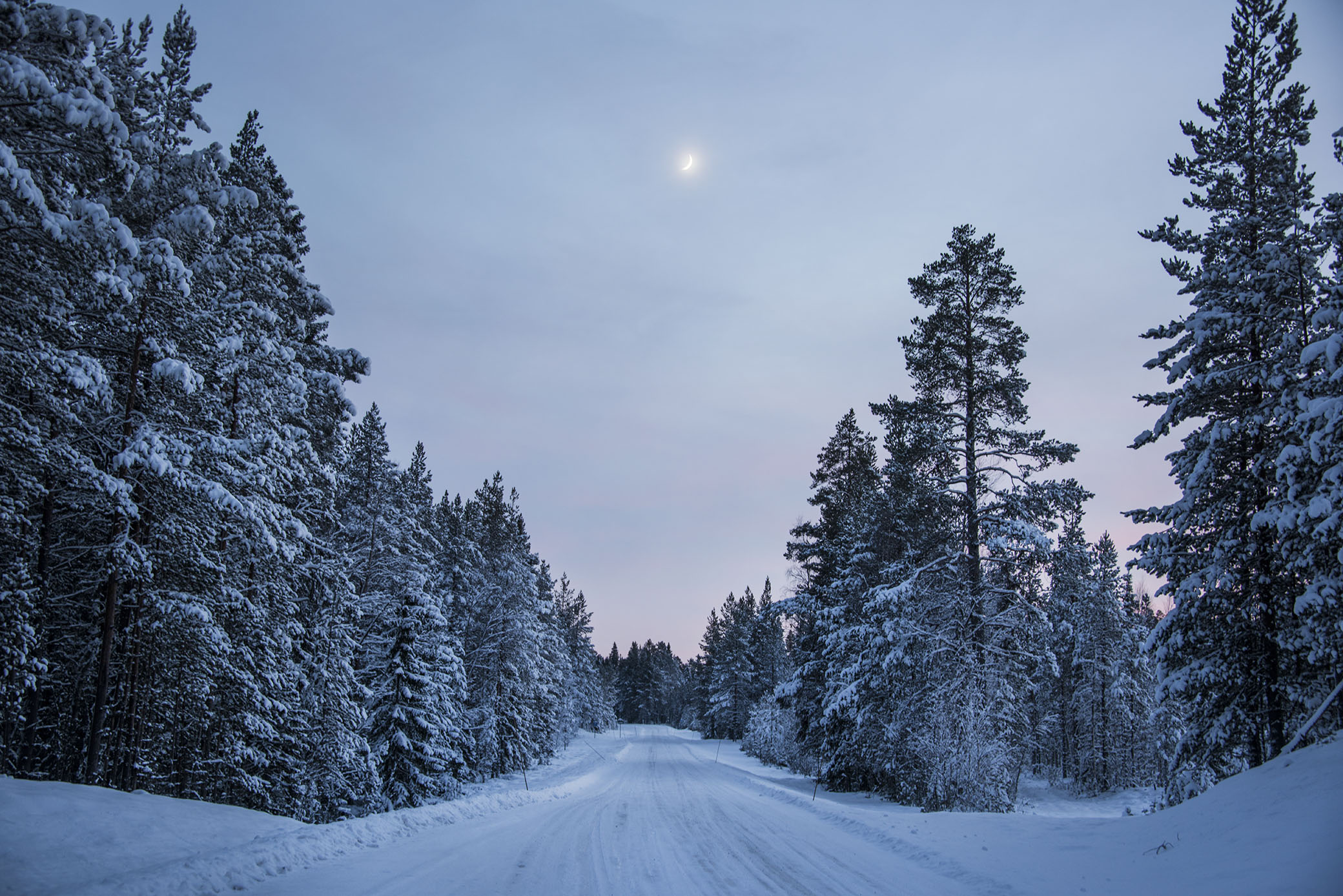 Men att fota i skymning och i mörkret är ju något jag älskar också. Speciellt sista tiden då det var så otroligt vackra nätter med miljontals stjärnor och en liten månskära som lyst upp i natten. Med riktigt mycket kläder går det att njuta av en vinternatt med -30 grader ute. Det är så magiskt vackert på något sätt. Alldeles tyst och stilla.