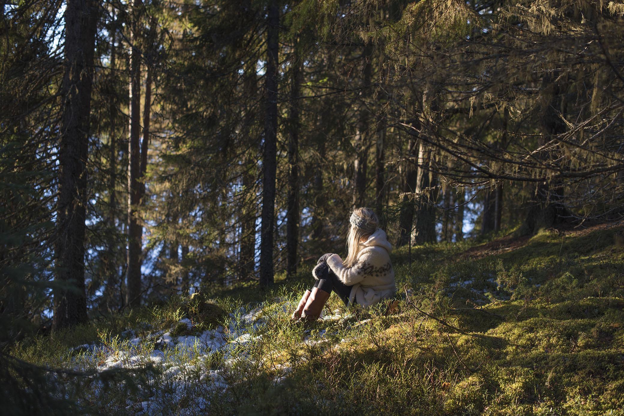 51c0d101 Jag var bland annat ner till isen en stund (som ni får se i morgon), och på  väg hem hade solen stigit ovanför skogen på andra sidan sjön, och strilades  så ...